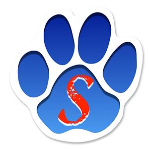 SouthEle-Logo-Trans